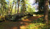 Trail Walk LONGPONT - en forêt de Retz_29_Longpont_la cave du Diable_A - Photo 245