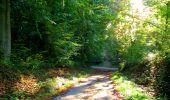 Trail Walk LONGPONT - en forêt de Retz_29_Longpont_la cave du Diable_A - Photo 49