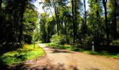 Trail Walk LONGPONT - en forêt de Retz_29_Longpont_la cave du Diable_A - Photo 141