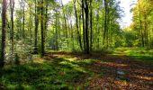 Trail Walk LONGPONT - en forêt de Retz_29_Longpont_la cave du Diable_A - Photo 25