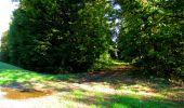 Trail Walk DAMPLEUX - en forêt de Retz_80_sur la Route Tortue et la Route Droite - Photo 41