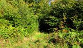 Trail Walk LONGPONT - en forêt de Retz_29_Longpont_la cave du Diable_A - Photo 197