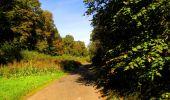 Trail Walk LONGPONT - en forêt de Retz_29_Longpont_la cave du Diable_A - Photo 157