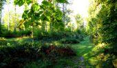Trail Walk LONGPONT - en forêt de Retz_29_Longpont_la cave du Diable_A - Photo 48