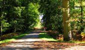 Trail Walk LONGPONT - en forêt de Retz_29_Longpont_la cave du Diable_A - Photo 124
