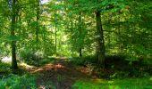 Trail Walk DAMPLEUX - en forêt de Retz_80_sur la Route Tortue et la Route Droite - Photo 203
