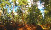 Trail Walk LONGPONT - en forêt de Retz_29_Longpont_la cave du Diable_A - Photo 253