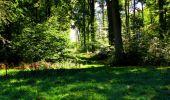 Trail Walk DAMPLEUX - en forêt de Retz_80_sur la Route Tortue et la Route Droite - Photo 187