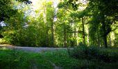 Trail Walk LONGPONT - en forêt de Retz_29_Longpont_la cave du Diable_A - Photo 72