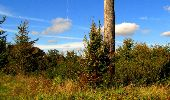 Trail Walk LONGPONT - en forêt de Retz_29_Longpont_la cave du Diable_A - Photo 184