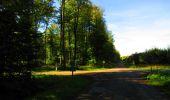 Trail Walk DAMPLEUX - en forêt de Retz_80_sur la Route Tortue et la Route Droite - Photo 198