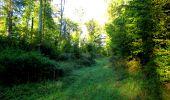 Trail Walk LONGPONT - en forêt de Retz_29_Longpont_la cave du Diable_A - Photo 53