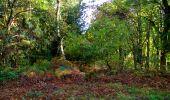 Trail Walk LONGPONT - en forêt de Retz_29_Longpont_la cave du Diable_A - Photo 13