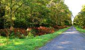 Trail Walk DAMPLEUX - en forêt de Retz_80_sur la Route Tortue et la Route Droite - Photo 274