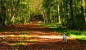 Trail Walk LONGPONT - en forêt de Retz_29_Longpont_la cave du Diable_A - Photo 24