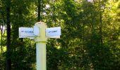 Trail Walk DAMPLEUX - en forêt de Retz_80_sur la Route Tortue et la Route Droite - Photo 188
