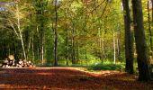 Trail Walk LONGPONT - en forêt de Retz_29_Longpont_la cave du Diable_A - Photo 22