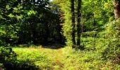 Trail Walk LONGPONT - en forêt de Retz_29_Longpont_la cave du Diable_A - Photo 154