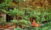 Trail Walk LONGPONT - en forêt de Retz_29_Longpont_la cave du Diable_A - Photo 256