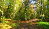 Trail Walk LONGPONT - en forêt de Retz_29_Longpont_la cave du Diable_A - Photo 27