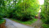 Trail Walk LONGPONT - en forêt de Retz_29_Longpont_la cave du Diable_A - Photo 51