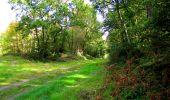 Trail Walk LONGPONT - en forêt de Retz_29_Longpont_la cave du Diable_A - Photo 214