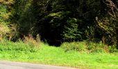 Trail Walk LONGPONT - en forêt de Retz_29_Longpont_la cave du Diable_A - Photo 173