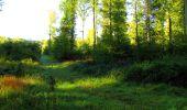 Trail Walk LONGPONT - en forêt de Retz_29_Longpont_la cave du Diable_A - Photo 47