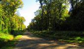 Trail Walk LONGPONT - en forêt de Retz_29_Longpont_la cave du Diable_A - Photo 153