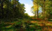 Trail Walk LONGPONT - en forêt de Retz_29_Longpont_la cave du Diable_A - Photo 167