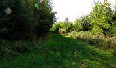 Trail Walk LONGPONT - en forêt de Retz_29_Longpont_la cave du Diable_A - Photo 201