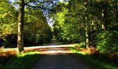 Trail Walk LONGPONT - en forêt de Retz_29_Longpont_la cave du Diable_A - Photo 127