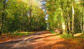 Trail Walk LONGPONT - en forêt de Retz_29_Longpont_la cave du Diable_A - Photo 20