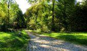 Trail Walk LONGPONT - en forêt de Retz_29_Longpont_la cave du Diable_A - Photo 191