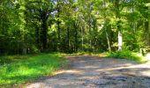 Trail Walk LONGPONT - en forêt de Retz_29_Longpont_la cave du Diable_A - Photo 151