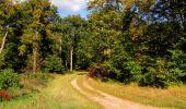 Trail Walk LONGPONT - en forêt de Retz_29_Longpont_la cave du Diable_A - Photo 204