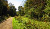 Trail Walk LONGPONT - en forêt de Retz_29_Longpont_la cave du Diable_A - Photo 156