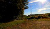Trail Walk LONGPONT - en forêt de Retz_29_Longpont_la cave du Diable_A - Photo 88