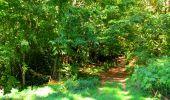 Trail Walk LONGPONT - en forêt de Retz_29_Longpont_la cave du Diable_A - Photo 122
