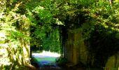 Trail Walk DAMPLEUX - en forêt de Retz_80_sur la Route Tortue et la Route Droite - Photo 23