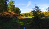 Trail Walk LONGPONT - en forêt de Retz_29_Longpont_la cave du Diable_A - Photo 166