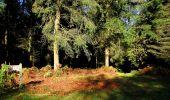 Trail Walk LONGPONT - en forêt de Retz_29_Longpont_la cave du Diable_A - Photo 17
