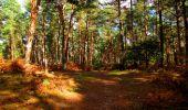 Trail Walk LONGPONT - en forêt de Retz_29_Longpont_la cave du Diable_A - Photo 222