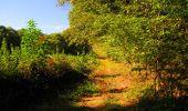 Trail Walk LONGPONT - en forêt de Retz_29_Longpont_la cave du Diable_A - Photo 160