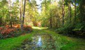 Trail Walk LONGPONT - en forêt de Retz_29_Longpont_la cave du Diable_A - Photo 217