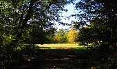 Trail Walk DAMPLEUX - en forêt de Retz_80_sur la Route Tortue et la Route Droite - Photo 39