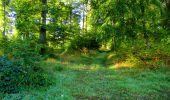Trail Walk LONGPONT - en forêt de Retz_29_Longpont_la cave du Diable_A - Photo 54