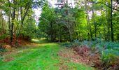 Trail Walk LONGPONT - en forêt de Retz_29_Longpont_la cave du Diable_A - Photo 247