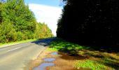 Trail Walk DAMPLEUX - en forêt de Retz_80_sur la Route Tortue et la Route Droite - Photo 42