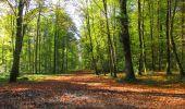 Trail Walk LONGPONT - en forêt de Retz_29_Longpont_la cave du Diable_A - Photo 21